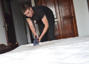 Mattress Cleaner South Kesnington
