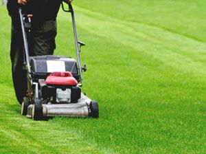 lawn-mowing-london-kensington